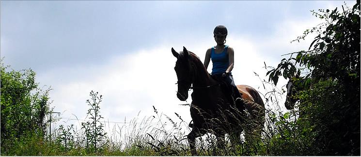 Pferdeladen-Schott
